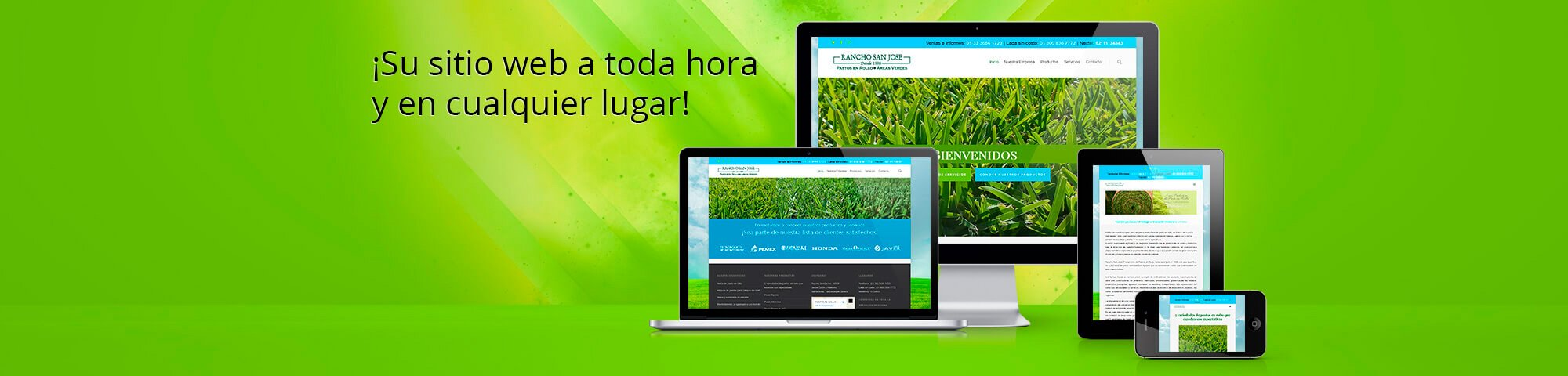 pagina web guadalajara