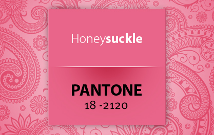 pantone18-2120